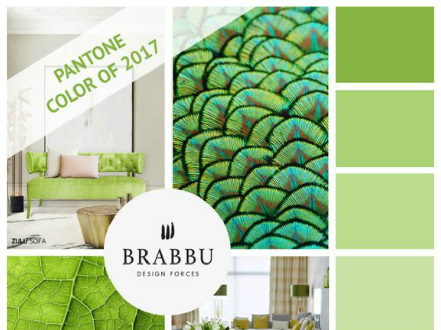 Modern Rugs Summer Trends with Pantone Colours Inspiration pantone colours inspiration Modern Rugs Summer Trends with Pantone Colours Inspiration 8055d6f2d76e390cd26fa80d3bc17eeb capa