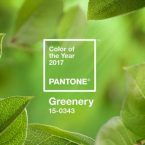 10 Ways to Decorate Using Pantone's 2017 Colorful Rugs: Greenery colorful rugs 10 Ways to Decorate Using Pantone's 2017 Colorful Rugs: Greenery PANTONE Color of the Year 2017 Greenery 15 0343 leaves 2732x2048 1200x900 145x145