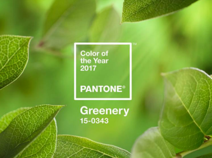 10 Ways to Decorate Using Pantone's 2017 Colorful Rugs: Greenery colorful rugs 10 Ways to Decorate Using Pantone's 2017 Colorful Rugs: Greenery PANTONE Color of the Year 2017 Greenery 15 0343 leaves 2732x2048 1200x900